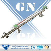 CX-MLM magnetic electrode for level control