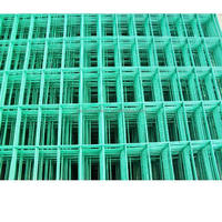 welded panel mesh / welded wire mesh sheet/ welded wire mesh price on hot sale