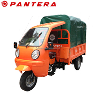 Passenger and Cargo Type 250cc Tricycle With Cabin