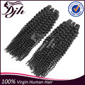 Human Hair Extensions Peruvian Kinky Curly Virgin Hair bundles