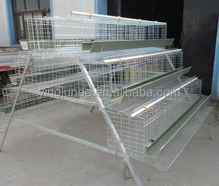 Chicken egg poultry farm equipment/automatic egg collecting machine