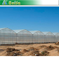 Disassembly Steel Multi Span Greenhouse Structure