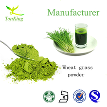Natural wheat grass powder, wheat grass juice powder