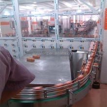 Complete tomato jam and fruit juice processing line 3000LPH