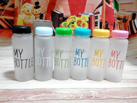 my bottle 500ml with bag today's special 2014 new popular clear fruits water bottles