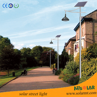 25W warm white LED solar garden lighting landscape lighting