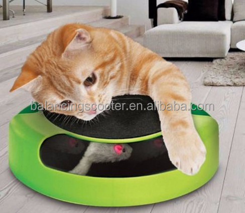 China hot sale Catch the Mouse Motion Cat Toy pet toy chase