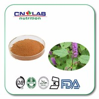 Organic natural plant Chinese Mosla Herb P.E. powder