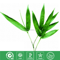 High Quality Extract Bamboo leaves extract flavones 24% 20% 15% 8% UV Prandial Extender