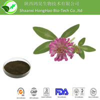 GMP Certified red clover extract powder/CAS No. 85085-25-2/red clover extract Isoflavones