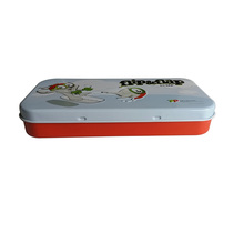Small Gift Packaging Rectangular Hinged Tin Box