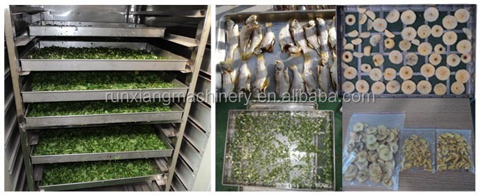 Industrial lemon fruit food forced air circulation drying oven