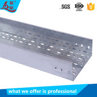 Electrical Data Base Pre-galvanized Stainless Steel Slotted Perforated Cable Tray Manufacturer Price 100mm 200mm
