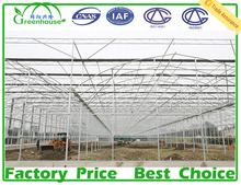 Agriculture plastic large multi span commercial greenhouse for sale