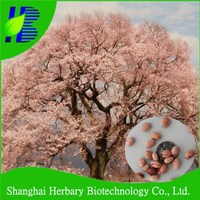 Landscape tree seeds sakura tree seeds for planting