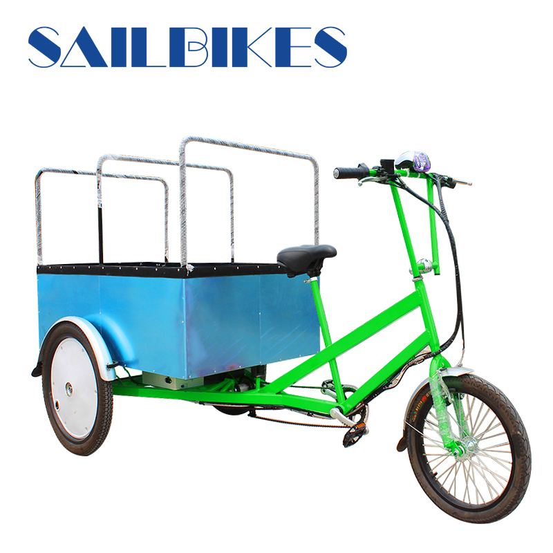 professional designed recumbent trike sale