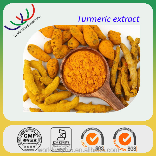 GMP Factory supply high quality 100% pure curcumin turmeric extract powder
