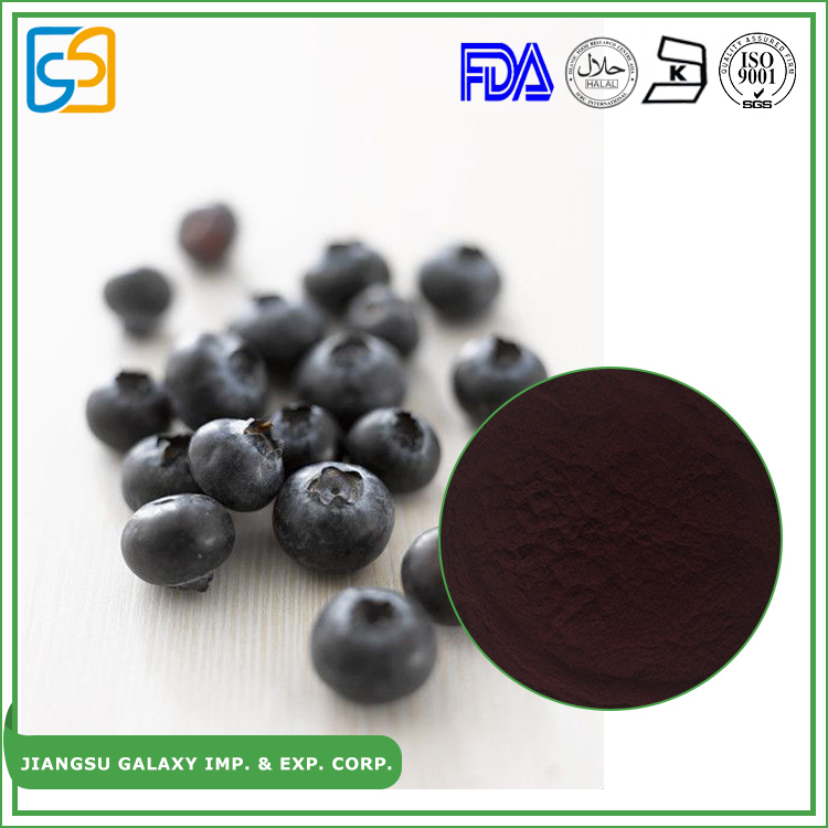 Competitive price natural anthocyanidin bilberry extract power