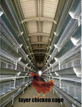 High tiers animal large chicken layer poultry cage for kenya farms for sale