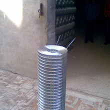 Wire Gauge 21 hot dipped galvanized welded mesh 3/8""