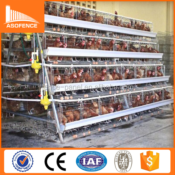African market layer chicken cages / used chicken cages for sale / used rabbit cages for sale