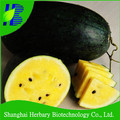 2017 Latest yellow watermelon seeds for planting