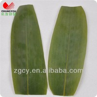 Fresh leaf bamboo plants for sale
