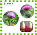 Milk thistle extract Silymarin 80% by UV,water- soluble