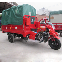 trike motorcycle/trimoto/cargo tricycle