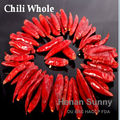 Chili Expert Factory Supplier Red Chilli