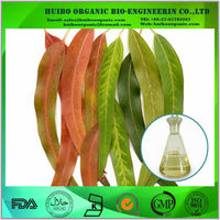 Pharmaceutical Grade Oil Of Eucalyptus / eucalyptus leaf oil / eucalyptus extract