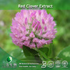 100% Pure Red Clover Biochanin A In Fine Powder