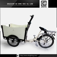 rain cover van pedal assisted BRI-C01 three wheel electric tricycle for cargo