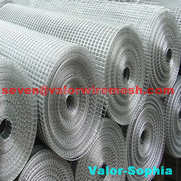 hot sale!!!flower bed welded wire mesh(anping Direct Factory)