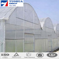 100gsm 4m*100m White Insect Netting