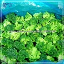 frozen vegetables IQF Broccoli