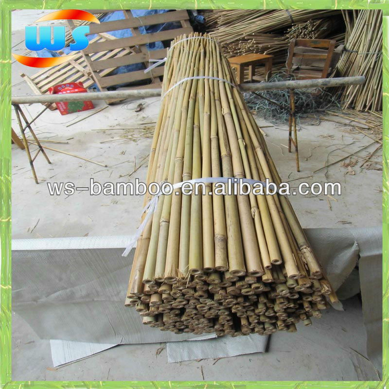 Plant support of bamboo 180cm 12-14mm