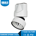 Wholesale Surface Mounted Fire Rated Cob Trimless 10W 20W 30W Recessed Led Downlight Price
