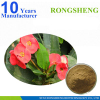 Professional manufacturer pure natural crown of thorns extract