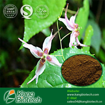 Chinese Herb Medicine for Penis Erection / Epimedium Extract for Sexual Health