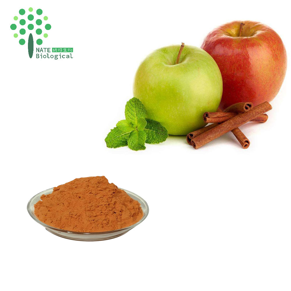 Natural Pure Green Apple extract Apple polyphenols 80%
