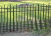 Hot-dipped glavanized steel tube pet fence