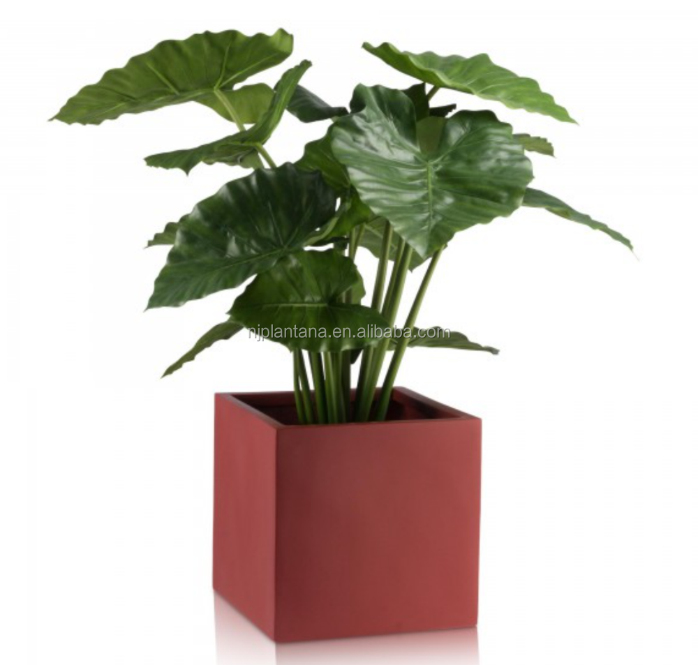 wholesales price fiberglass square plant container