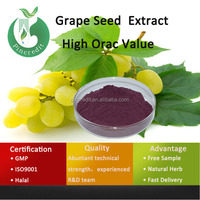 Organic Grape Seed Extract/Grape Seed Extract 95%/Grape Seed Extract (High Orac Value)
