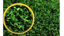 15' X 13' XLT Dog Run Kennel Turf - Artificial / Synthetic Turf - K9 (1800)
