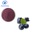 Natural Bilberry Extract, Blueberry Extract 25% Anthocyanidin