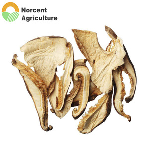 Wholesale Natural Agriculture Farming Dried Shiitake Mushroom Slices