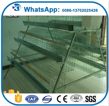 2017 new products batting cage chicken cage in beijing in africa market