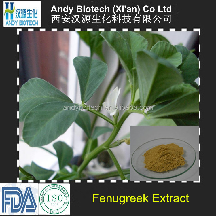 Free Sample Top Quality Fenugreek Extract