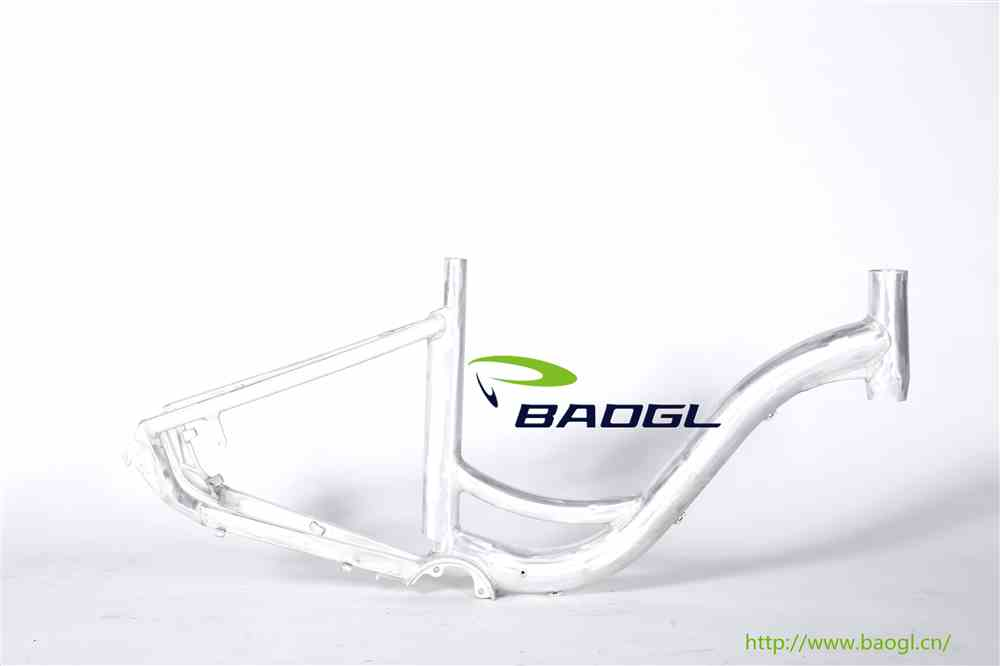 BAOGL bicycle frame for new concept bike